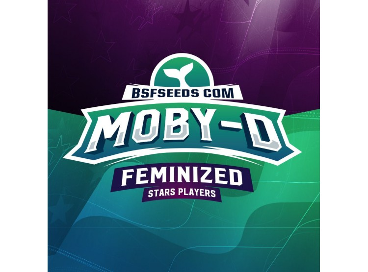 Moby-D 2 Semillas Bsf Seeds para cultivo indoor